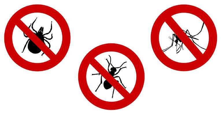 Desinsectación para controlar plagas de insectos