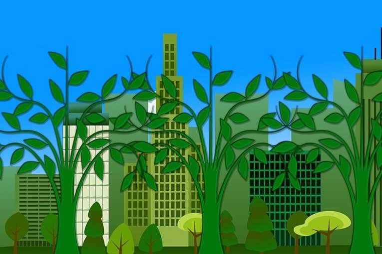 eliminar la contaminación biológica con ozono