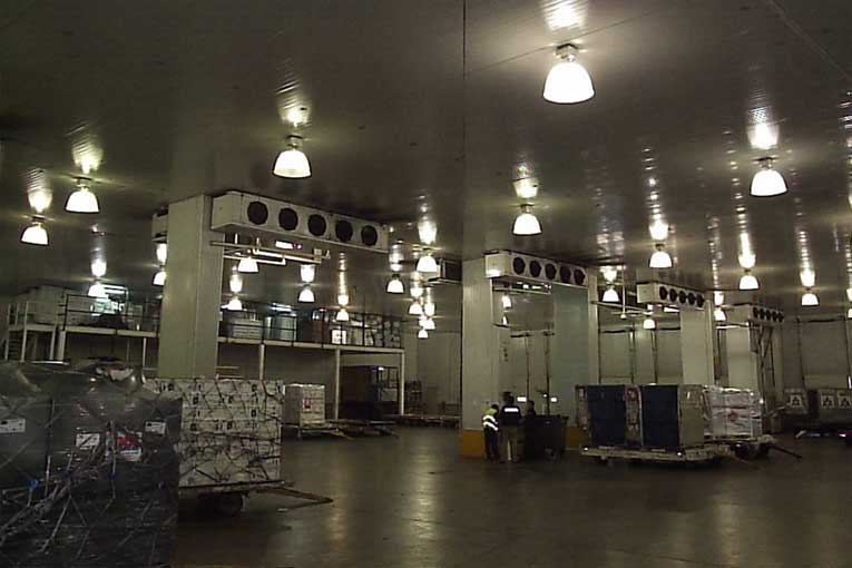 generadores de ozono en cámaras de refrigeración