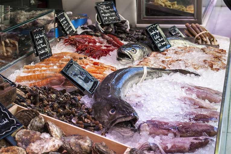 almacenar y conservar carnes y pescados en cámaras de frío con ozono