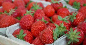 como aumentar la vida útil de las fresas