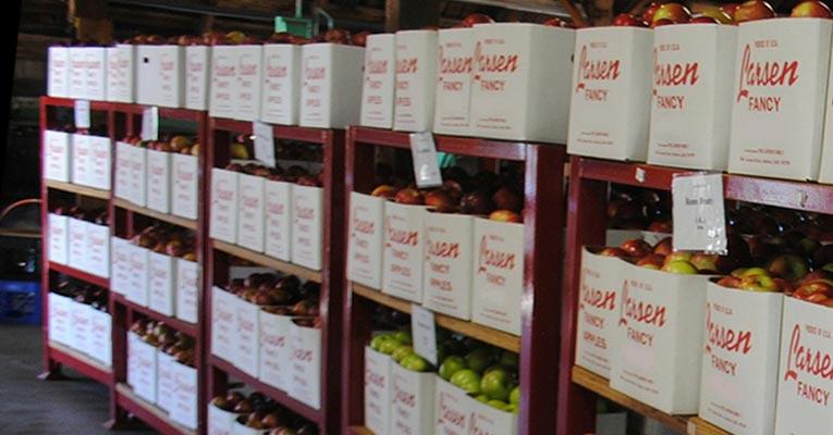desinfección de cámaras frigoríficas de frutas