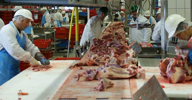 desinfeccion salas manipulacion carne