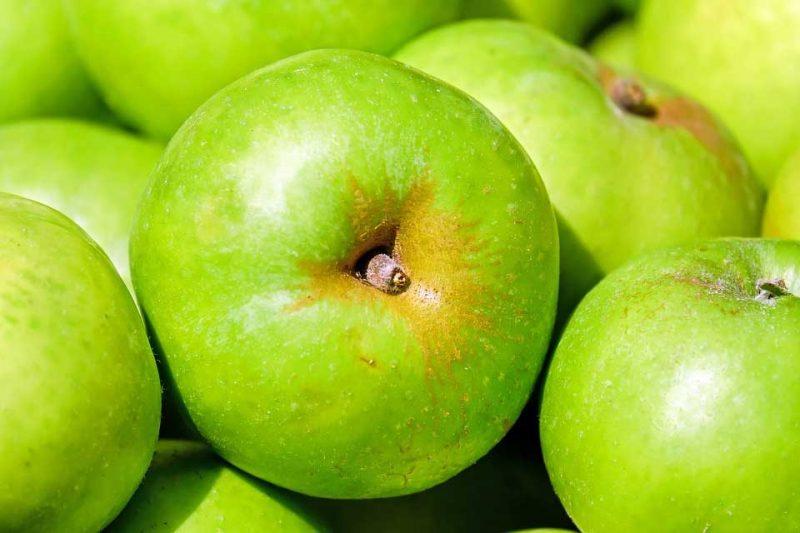 uso de ozono en la conservación de frutas y verduras