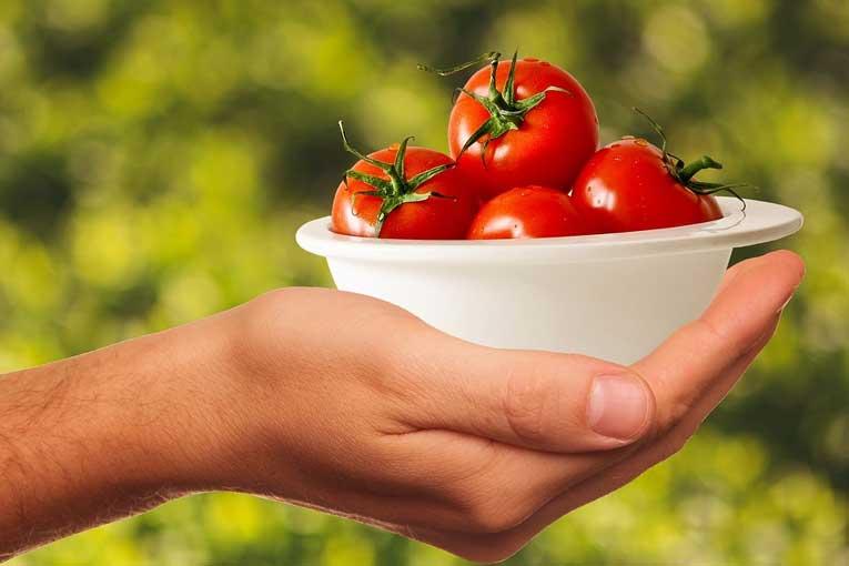 generadores de ozono para salud alimentaria
