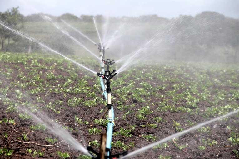 desinfección y mejora de la calidad del agua con ozono
